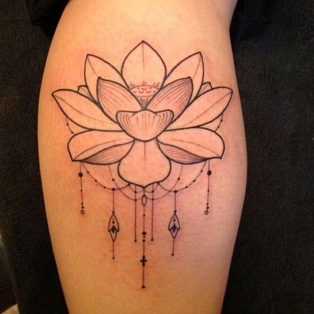 Precious lotus flower Joao Chavez.