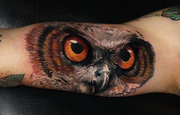Crazy realistic owl's face by Carlox!