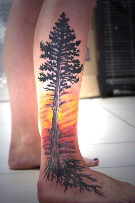 Pine tree on Sunset, can you give the artist's name please?