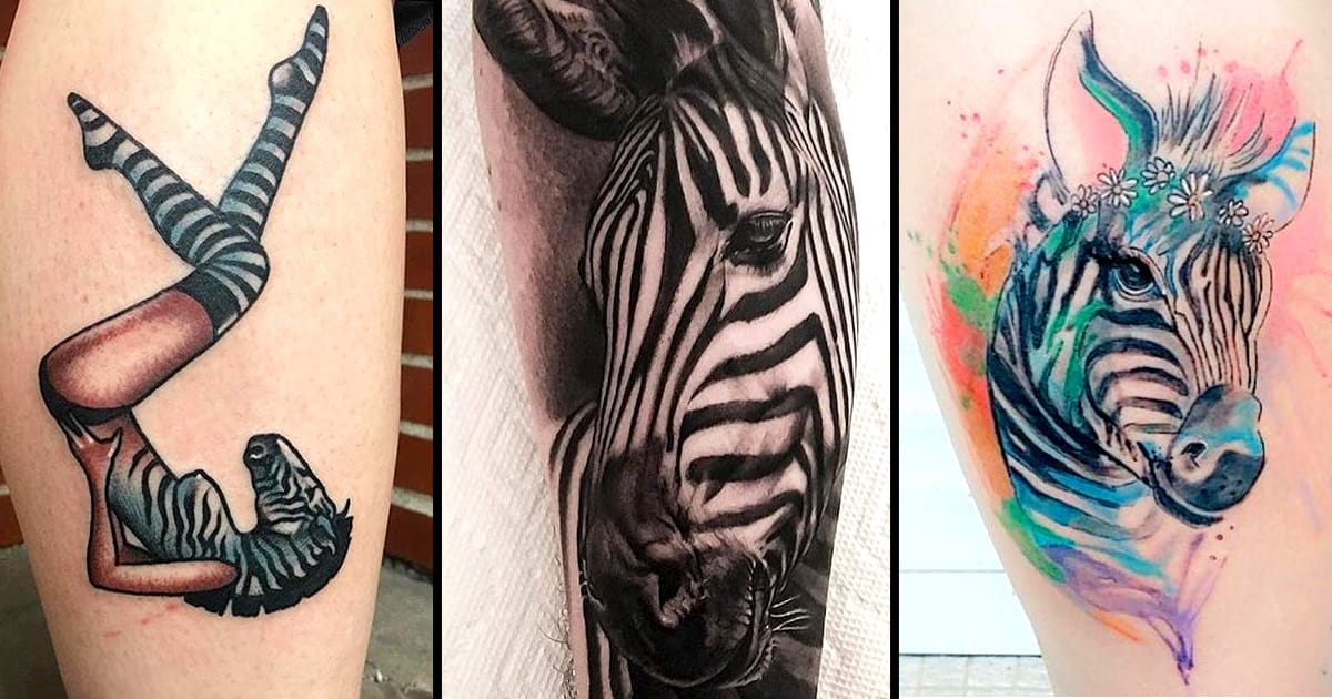 12 unique zebra tattoos tattoodo. Black Bedroom Furniture Sets. Home Design Ideas