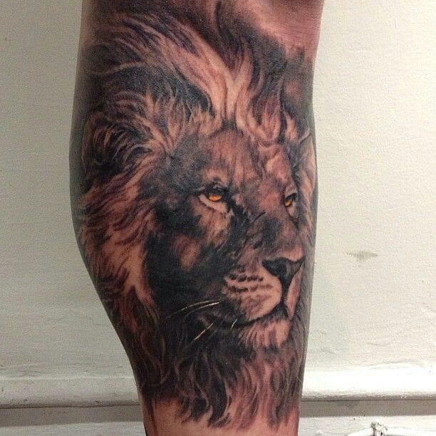 Carlos Torres e um magnífico Leão de perfil