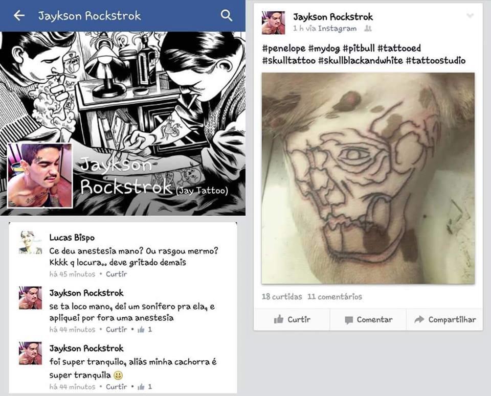 """""""Tatueiro"""" dopa um cachorro para tatuá-lo!"""