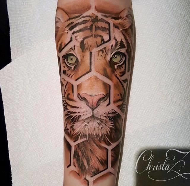 Tigre com geometria por Christa Z Lanastra