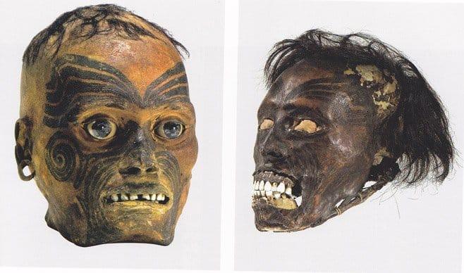 As cabeças eram conservadas em formol