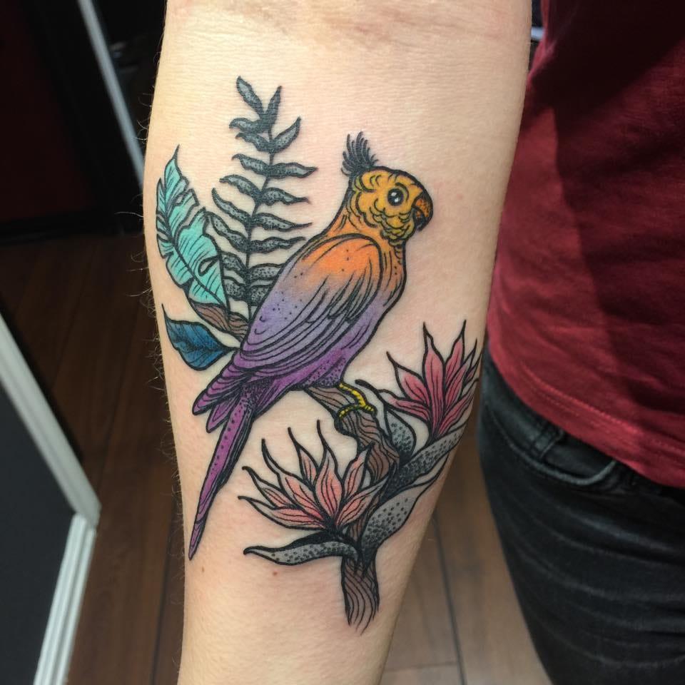 Cute parrot by Karolina Skulska.
