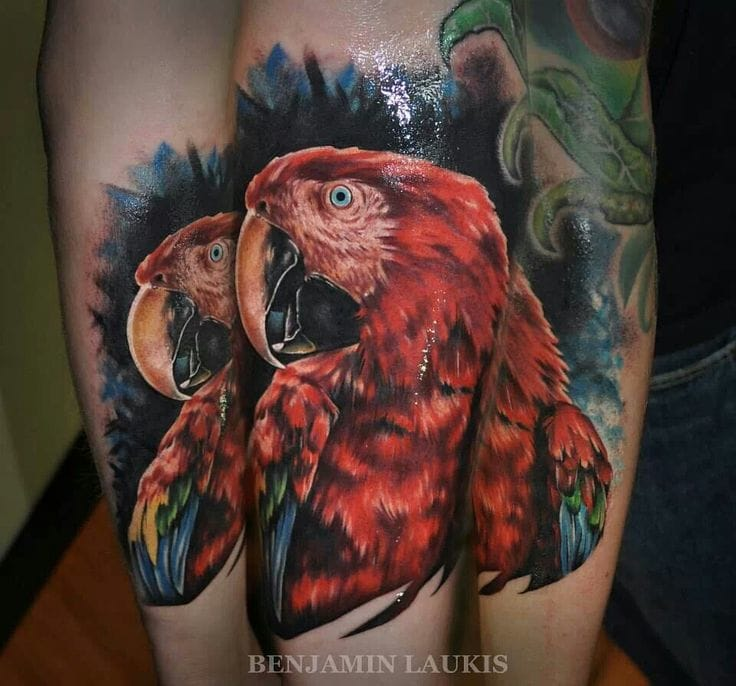 done by Benjamin Laukis