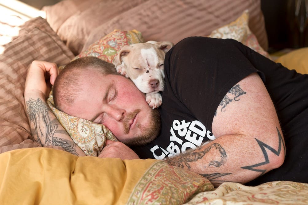 Tattoos And Rescues. Courtesy of Brian Batista Photography