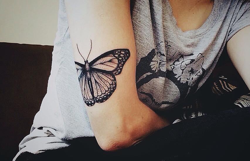 As borboletas!!!