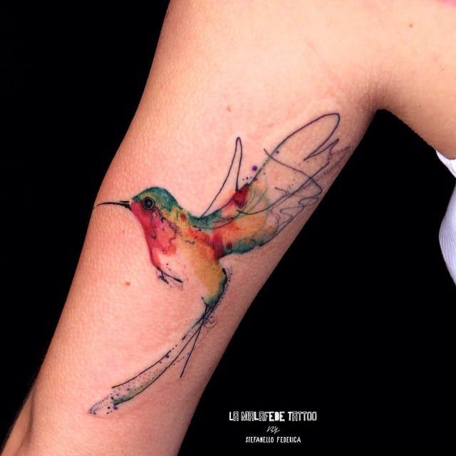 Cool hummingbird.