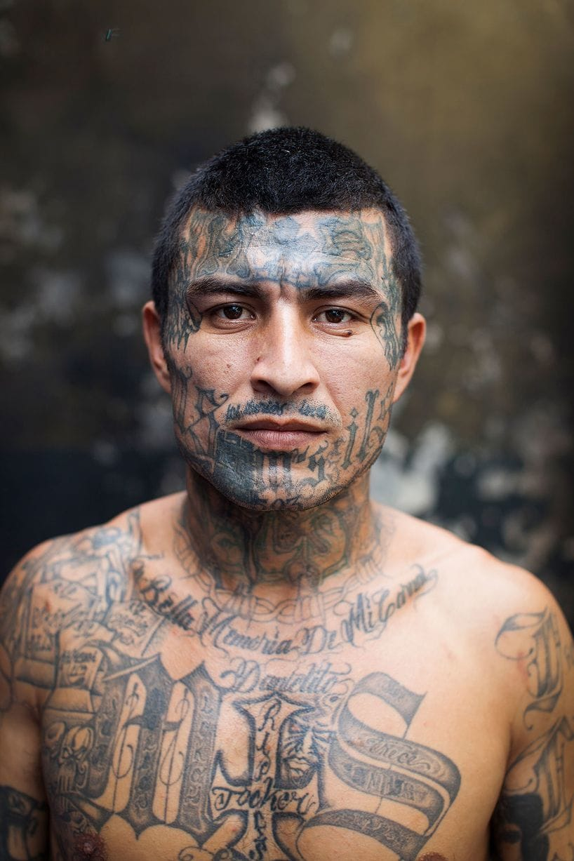 Prison Guards Are Afraid Of Tattooed Ms-13 Gang Members