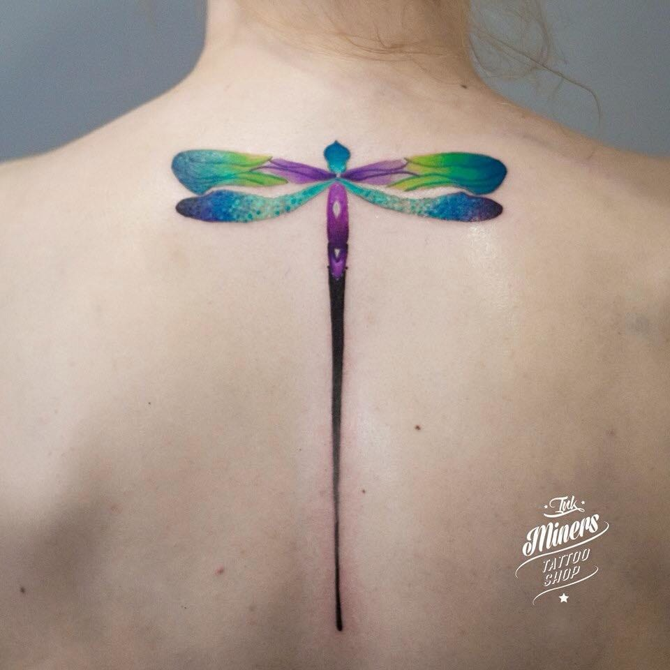 Gorgeous dragonfly...
