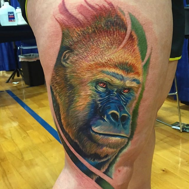Seems like I never get tired of looking at this gorilla! via @brian_zolotas