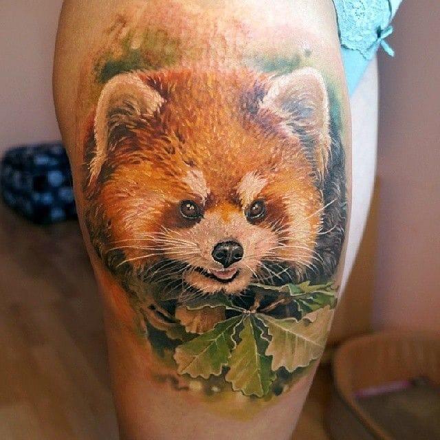 Realistic Red Panda Tattoo By Pashkov Tattoo-X