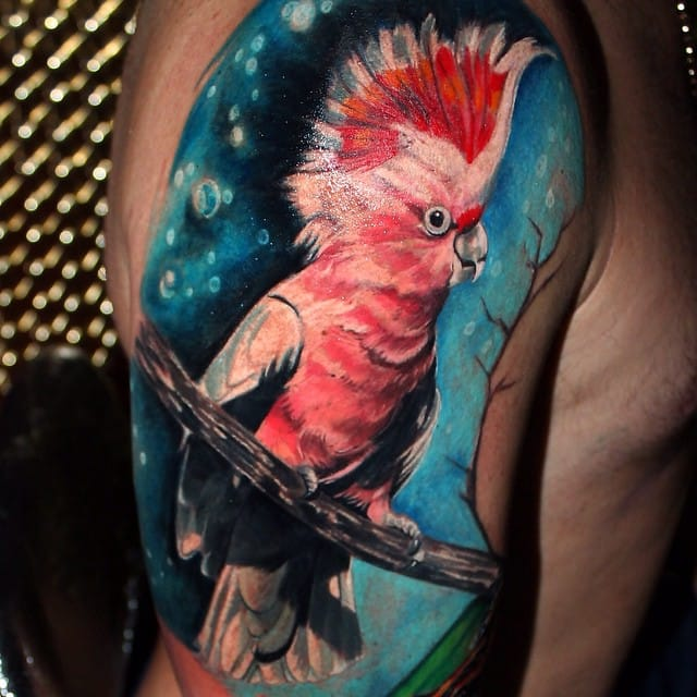 Blue and pink goes well with this parrot tattoo..