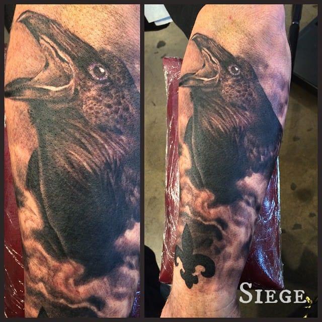 siege raven