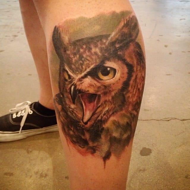 siege owl 2