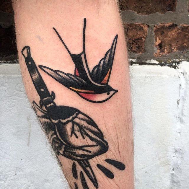 Josh russell swallow bird