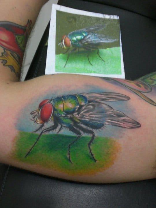 A mosca que pousou na tua sopa