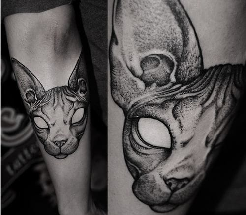 30 oddly charming sphynx cat tattoos tattoodo for White cat tattoo floresta