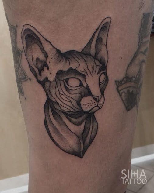 30 oddly charming sphynx cat tattoos tattoodo