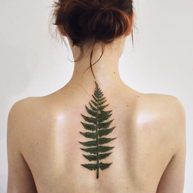 15 graceful fern tattoos