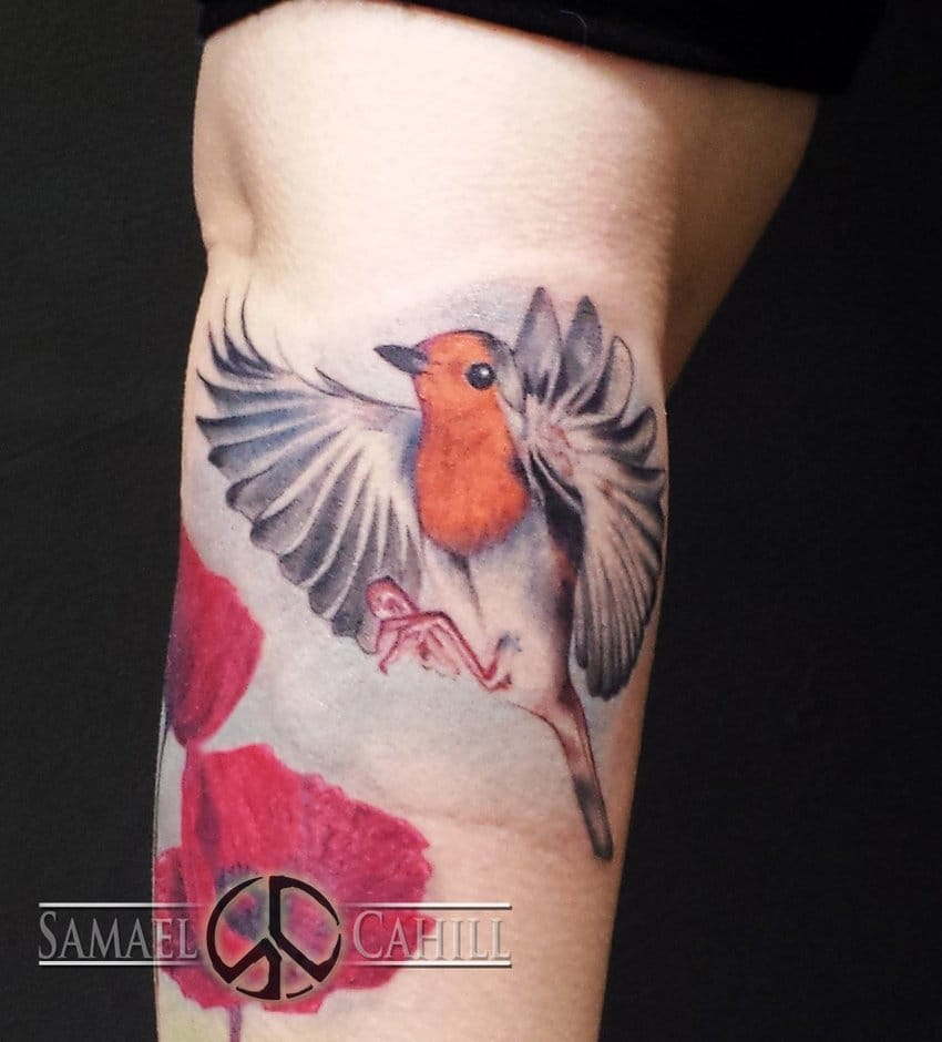 15 chirpy robin tattoos tattoodo