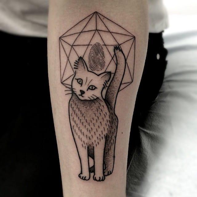 Cat identity by Moorea Hum.