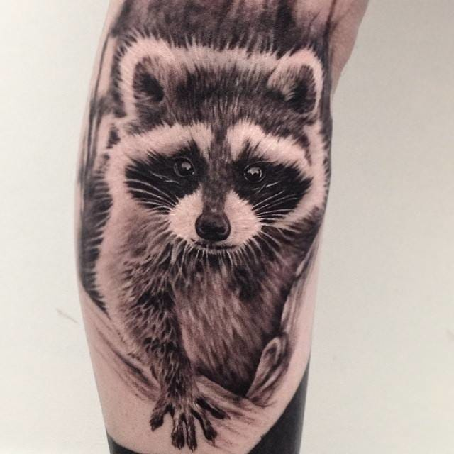 22 Quizzical Raccoon Tattoos