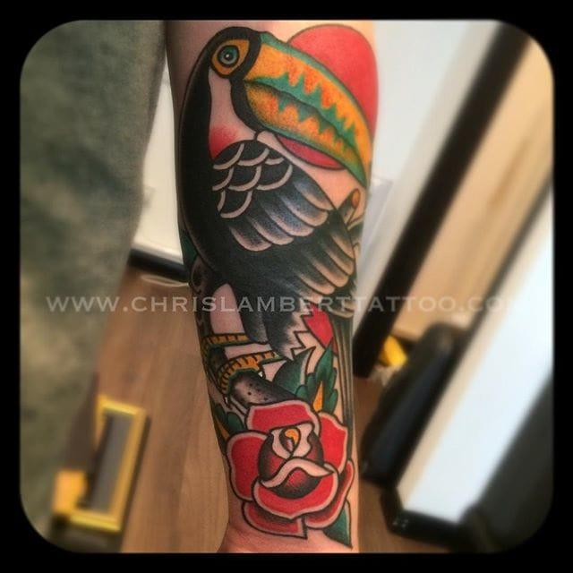 Toucan Rose by Chris Lambert