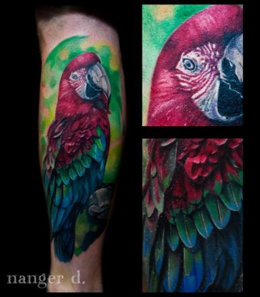 25 Colorful True Parrot Tattoos