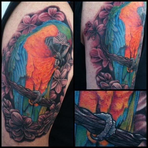 Parrot Tattoo by Mike DeVries