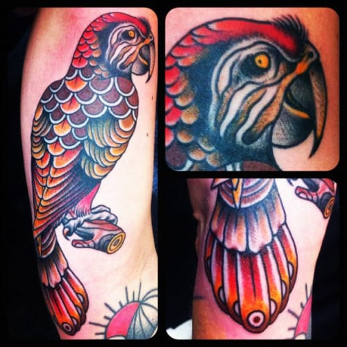 Traditional Parrot Tattoo by Salvation Tattoo