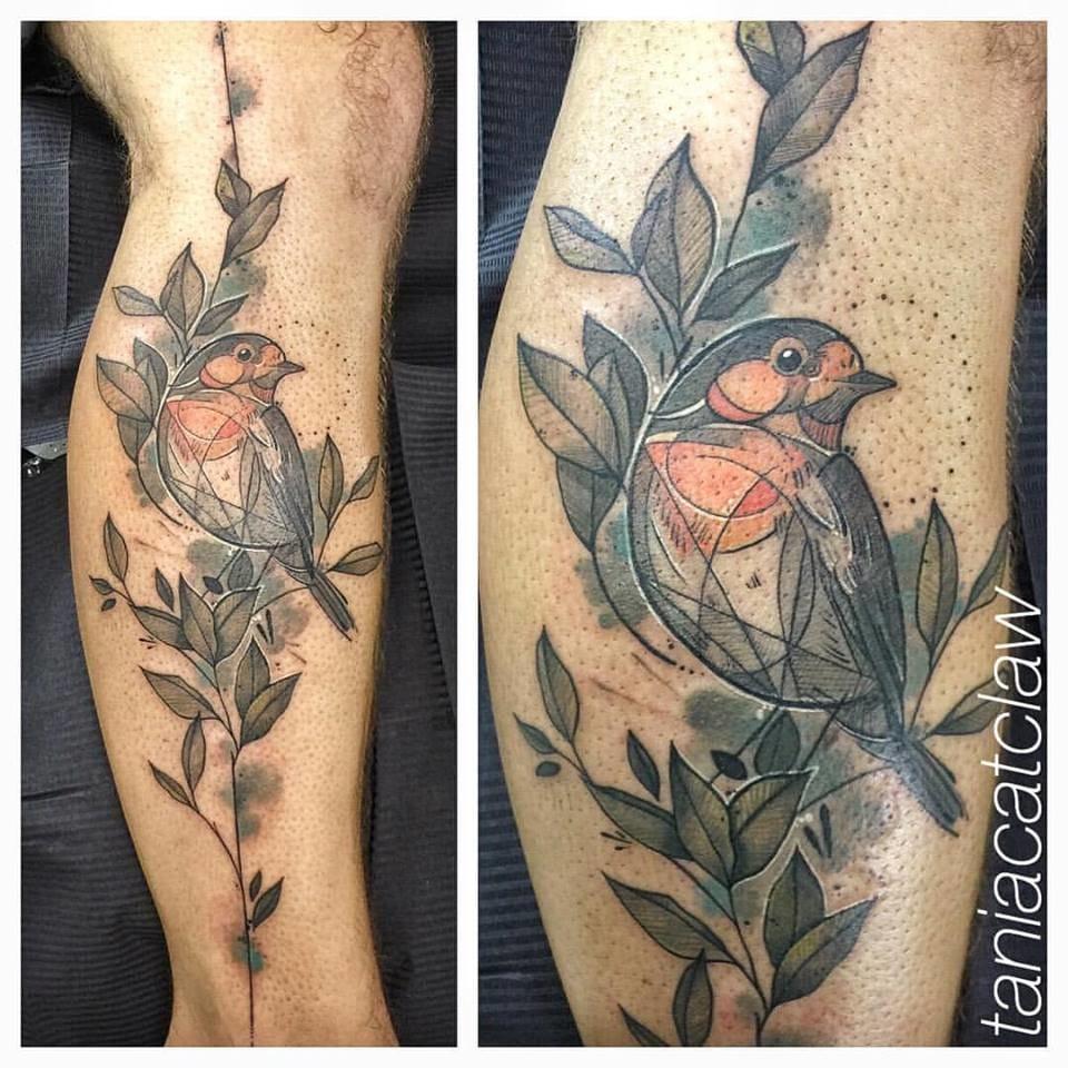 Lovely robin.