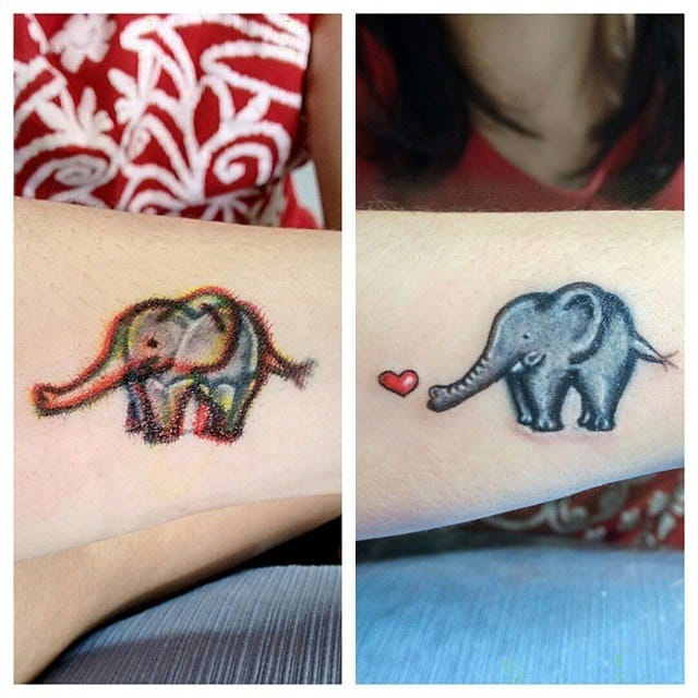 Elefantinho puro amor!
