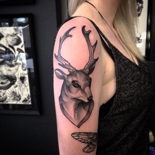 Solid Stag Tattoo by Pari Corbitt