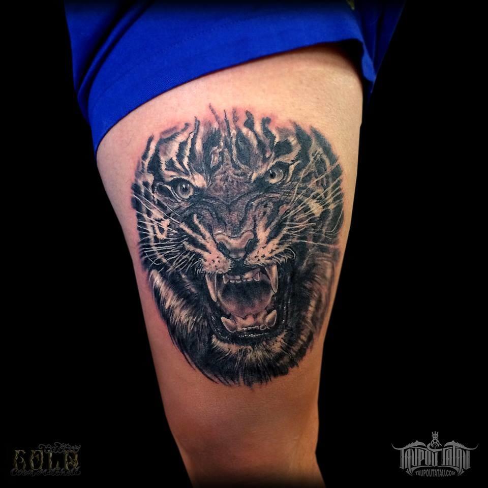 Mais um feliz tigre