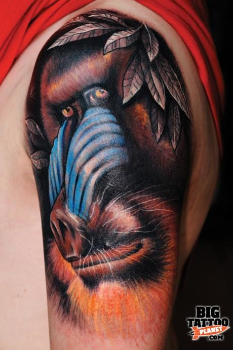 Insane detail on this photo realistic mandrill baboon tattoo.