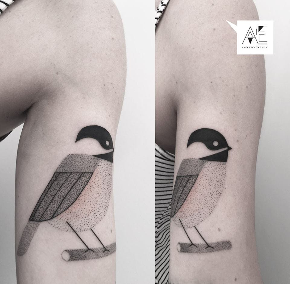 Charming song bird.