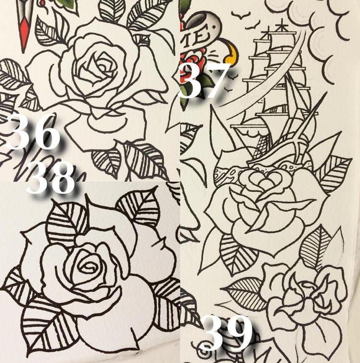 Roses 36 - 39!