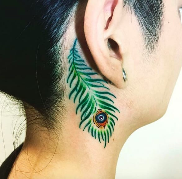 Bright peacock feather by Instagram @hachidtb.