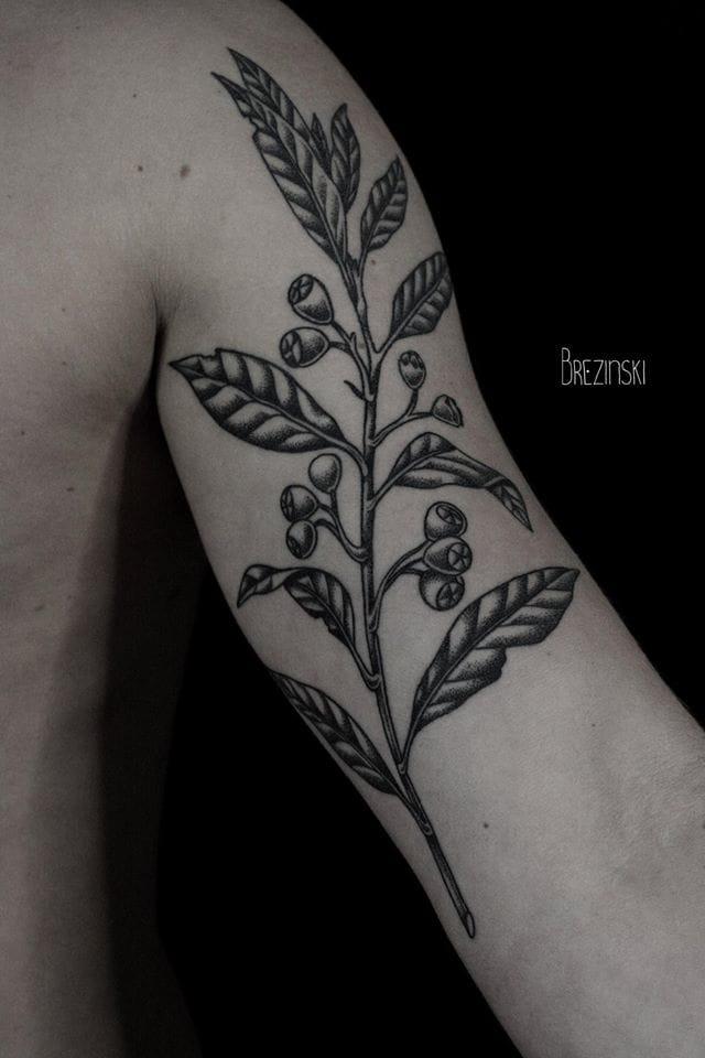 Lovely dark botanic.
