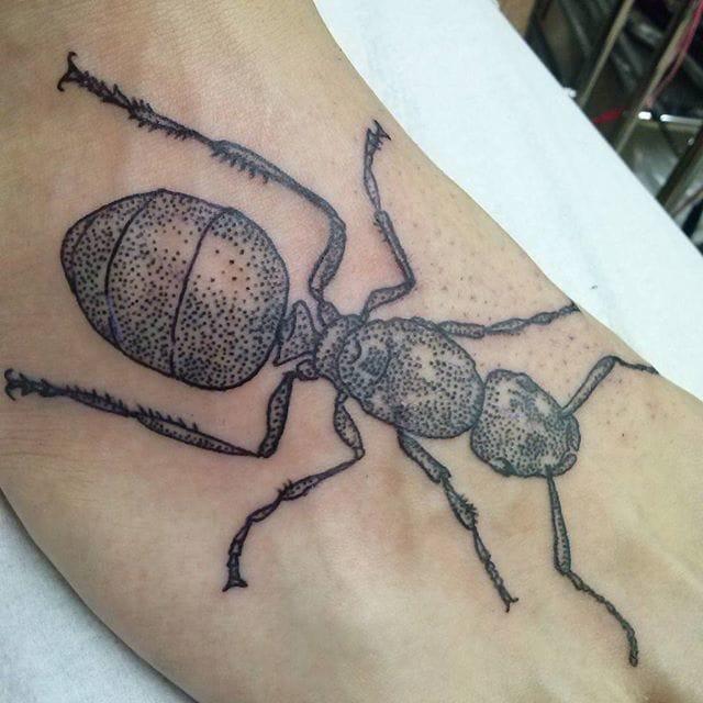 Dotwork Ant Tattoo, artist unknown