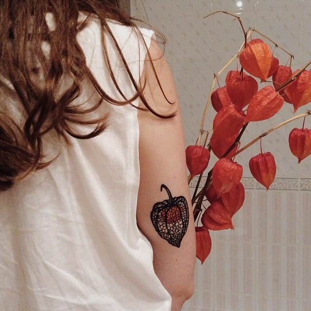12 Delicate Physalis Tattoos