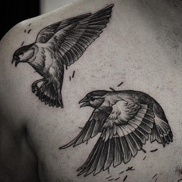 Sweet birds #DanielBaczewski