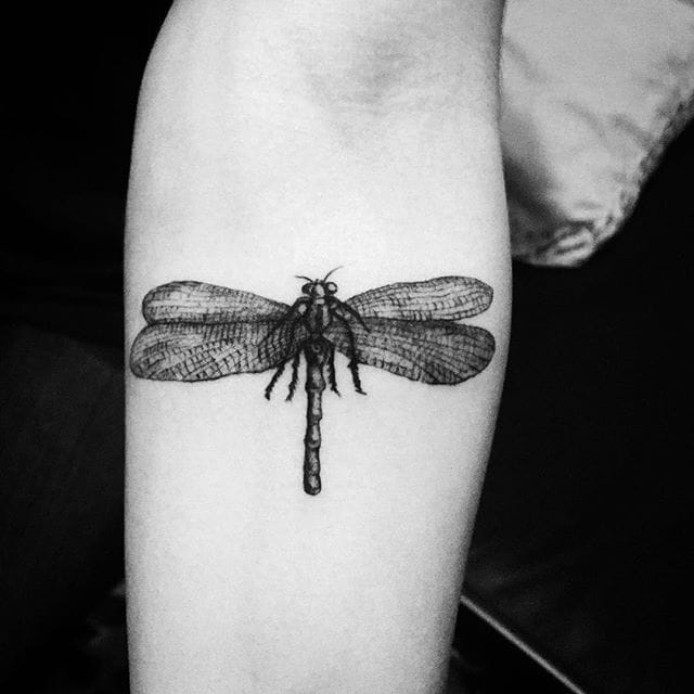 Dragonfly forearm tattoo #errancetattoos