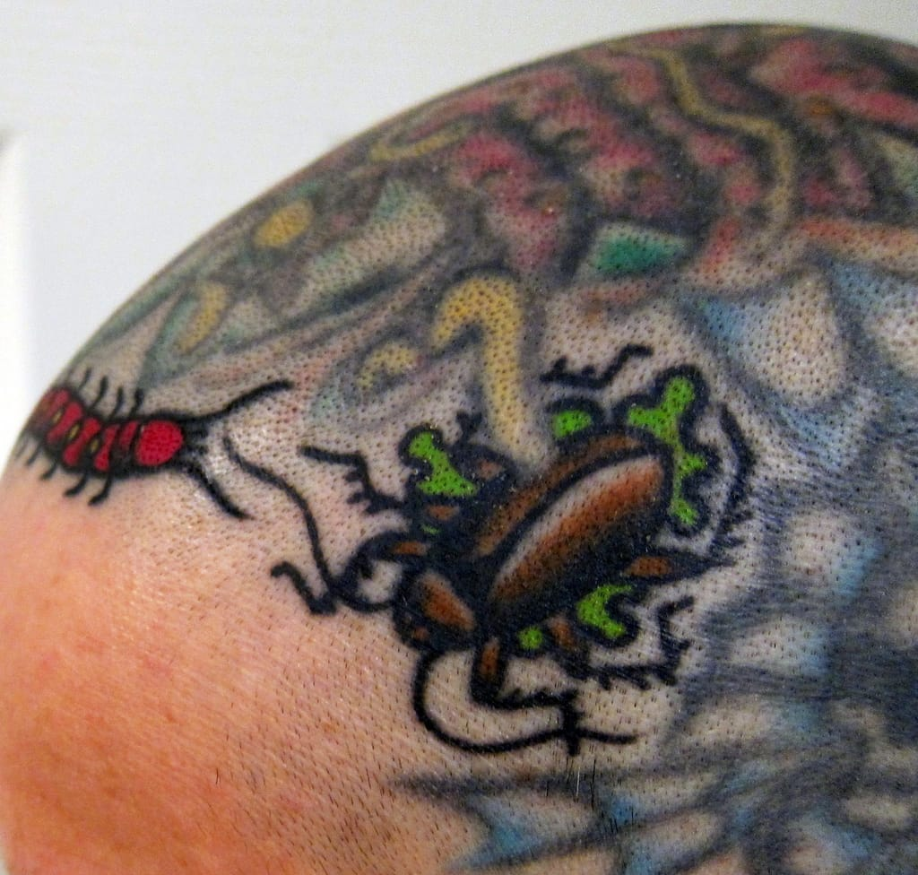 Fun Tattoo on the head by Tony Hundahl, done at Rock of Ages tattoo