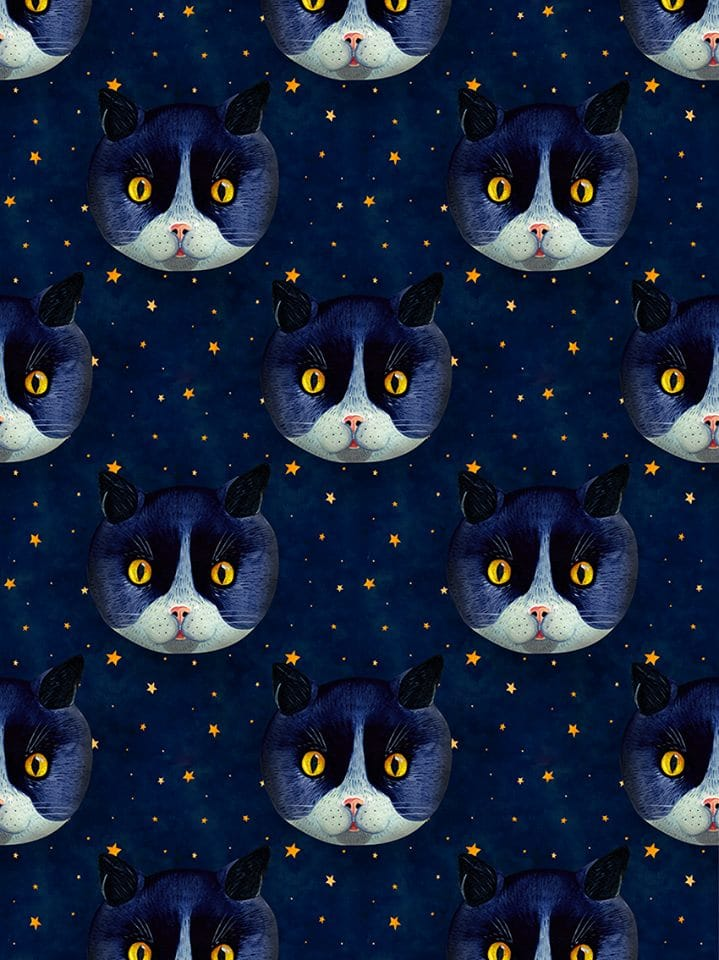 Cat Pattern by Aitch.