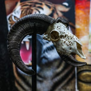 Bighorn Sheep skull #skullcarvings