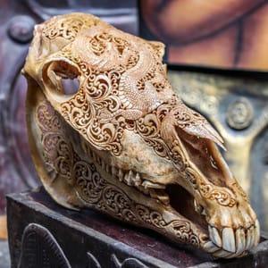 Horse skull #skullcarvings