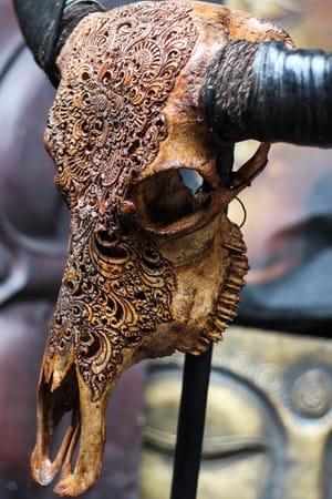Buffalo skull #skullcarvings
